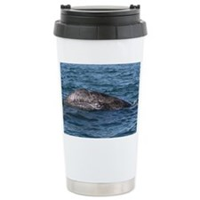 2-IMG_2782 Travel Coffee Mug
