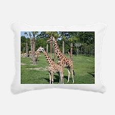 IMG_2530 Rectangular Canvas Pillow