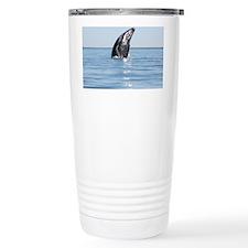 3-IMG_1111 Travel Mug