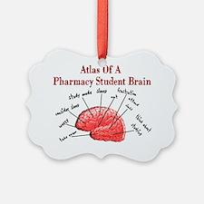 Atlas of Pharmacy Student Brain Ornament