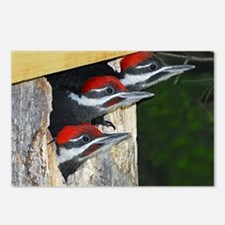 note card -front Postcards (Package of 8)