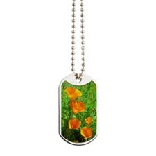California Poppies Dog Tags
