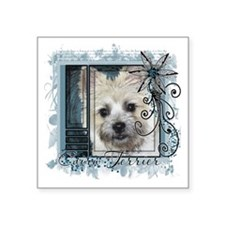 "Look_Eyes_Cairn_Teddy_Bear_ Square Sticker 3"" x 3"""