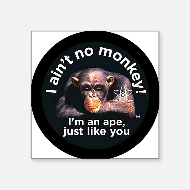"2-aint no monkey-larger Square Sticker 3"" x 3"""