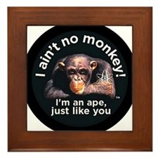 2-aint no monkey-larger Framed Tile