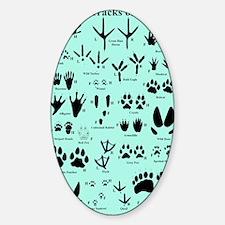 floridatracksblue Sticker (Oval)