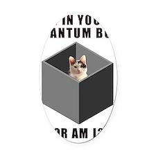 Quantum Cat Oval Car Magnet