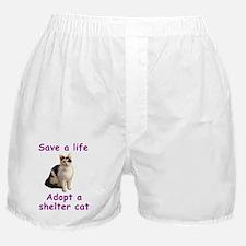 ShelterCat Boxer Shorts