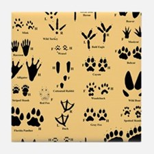 floridasmallltorange Tile Coaster