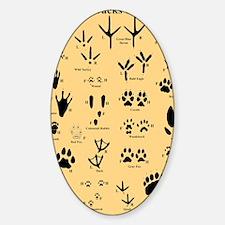 floridasmallltorange Sticker (Oval)
