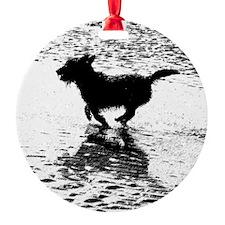 Billie Beach 2 Ornament