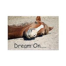 Dream On Sleeping Horse Rectangle Magnet