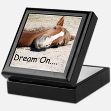 Dream On Sleeping Horse Keepsake Box