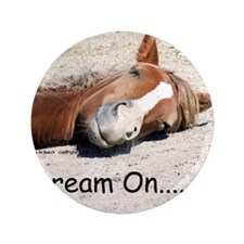 "Dream On Sleeping Horse 3.5"" Button"