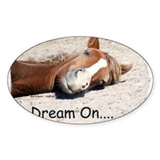 Dream On Sleeping Horse Decal