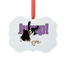 JumpSpringers Ornament