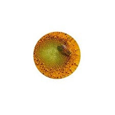 SunflowerBFramedPanelPrint Mini Button