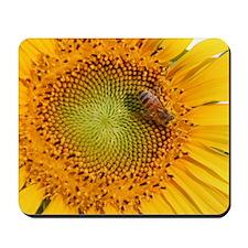 SunflowerBFramedPanelPrint Mousepad