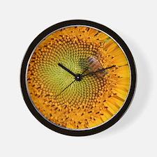 SunflowerBFramedPanelPrint Wall Clock