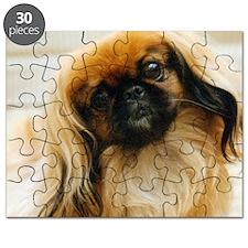 allpekingese Puzzle