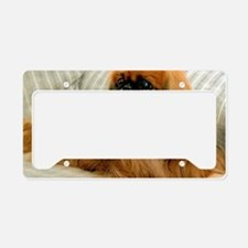 all pekingese License Plate Holder