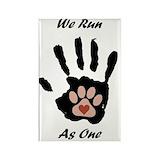 Agility dog Single