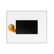 2-Wax Moth Orange Blk Picture Frame