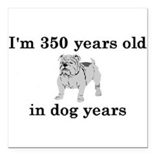 50 birthday dog years bulldog 2 Square Car Magnet