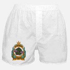 alincoln patch transparent Boxer Shorts
