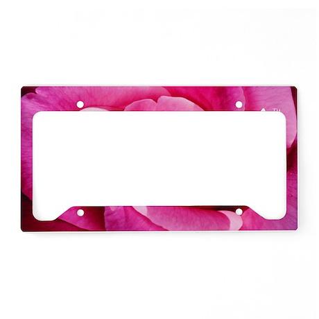 Lil Pink Crush Pink Rose2 License Plate Holder
