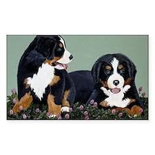 Bernese Pups in Clover Decal