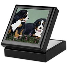 Bernese Pups in Clover Keepsake Box