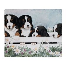 Bernese Five in a Box Throw Blanket