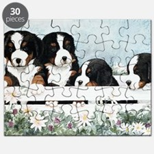 Bernese Five in a Box Puzzle
