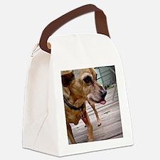 DSC02630 Canvas Lunch Bag