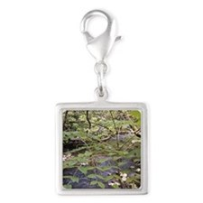 Waterfalls River Silver Square Charm