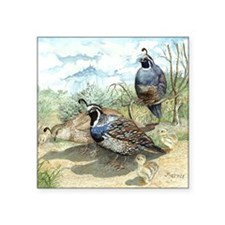"""Quail on a Summer Day Square Sticker 3"""" x 3"""""""