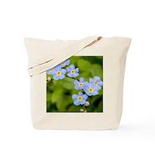 DSCN3394 Tote Bag