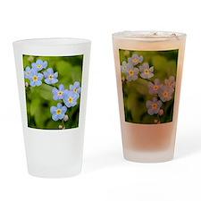 DSCN3394 Drinking Glass