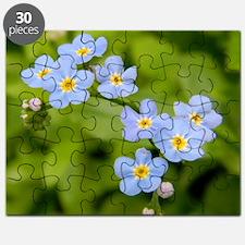 DSCN3394 Puzzle