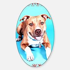 Pit Bull- An American Hero Sticker (Oval)