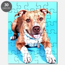 Pit Bull- An American Hero Puzzle