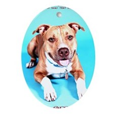 Pit Bull- An American Hero Oval Ornament
