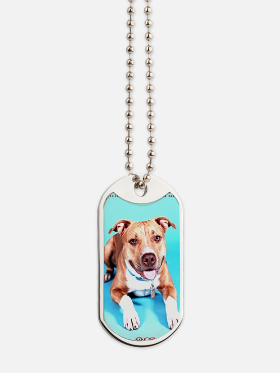 Pit Bull- An American Hero Dog Tags