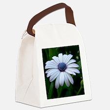 DSCN5832 Canvas Lunch Bag