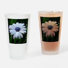 DSCN5832 Drinking Glass