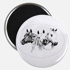 va-dark10x10_apparel Magnet