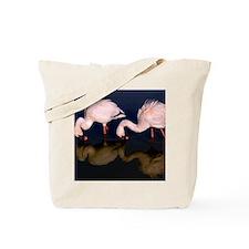 (12)  2 Flamingo Waders Tote Bag
