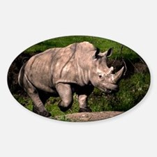 (2) Rhino on Hill Sticker (Oval)
