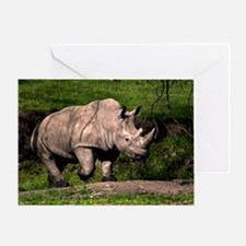 (3) Rhino on Hill Greeting Card